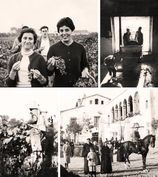 Historia RR Sadurni