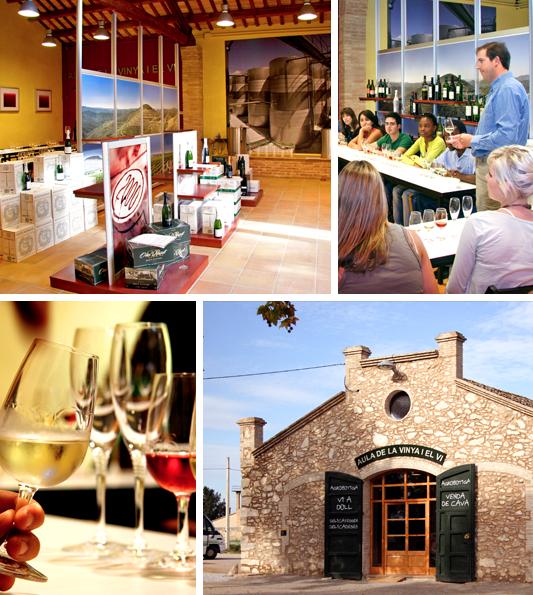 Aula de la vinya i el vi